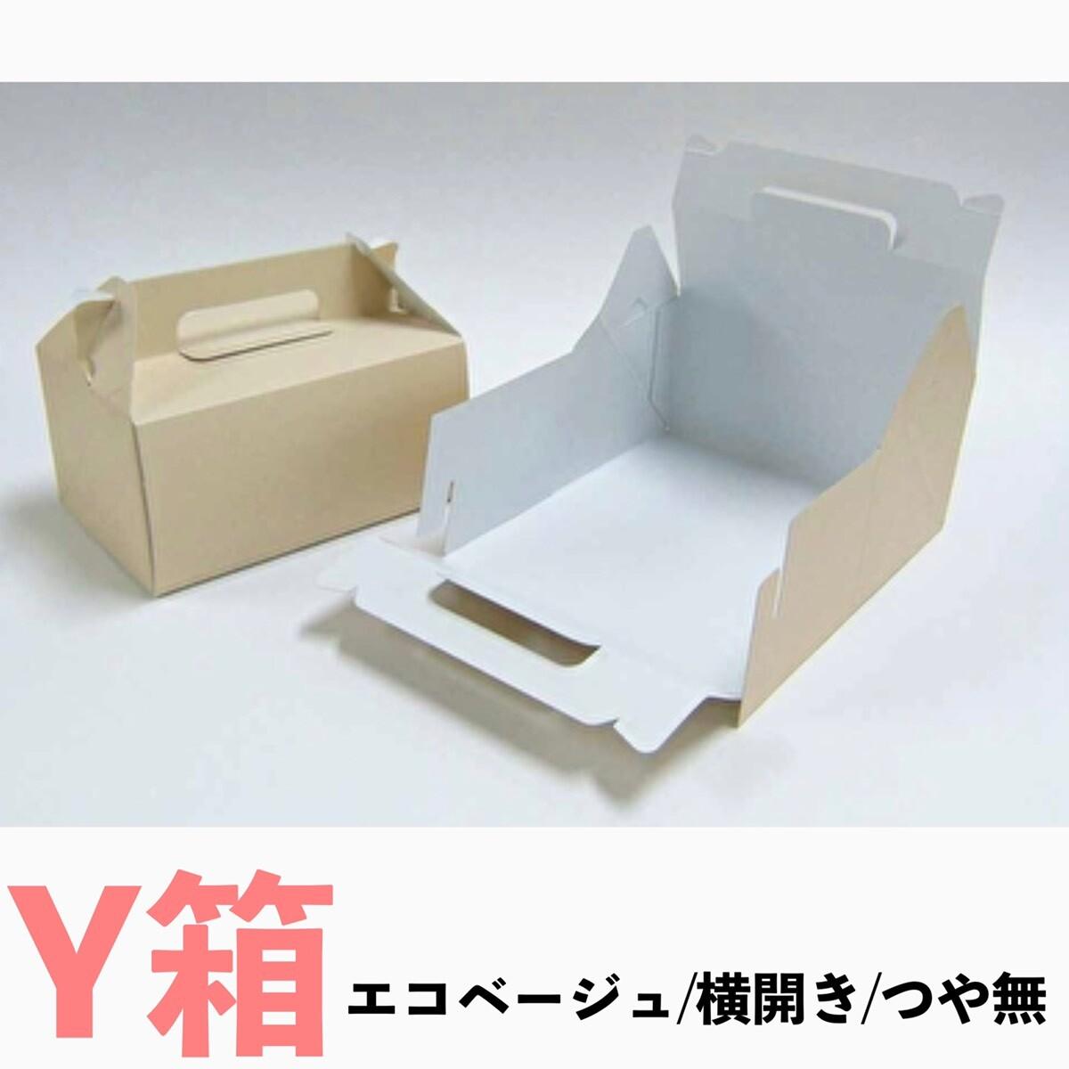 画像1: C-エコ-Y(横入れ)/2Y/4Y/6Y/8Y/10Y (1)